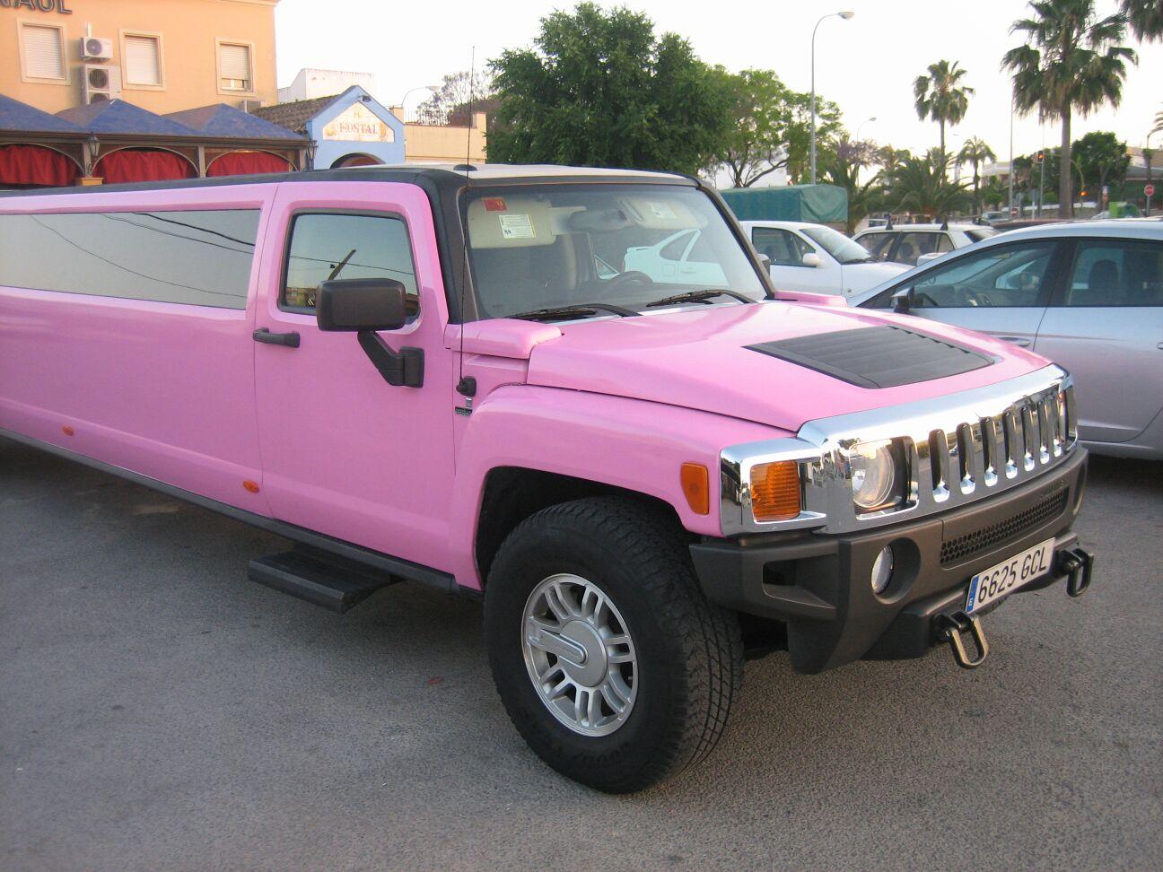 Hummer-Rosa