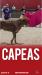 Capeas A Coruña