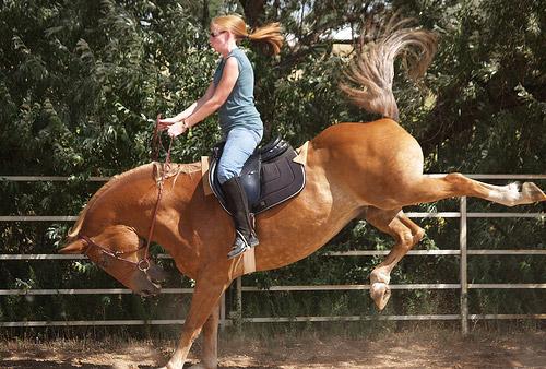 Ruta a caballo BCN