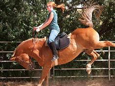 ruta a caballo barcelona