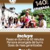 Burro Taxi Granada