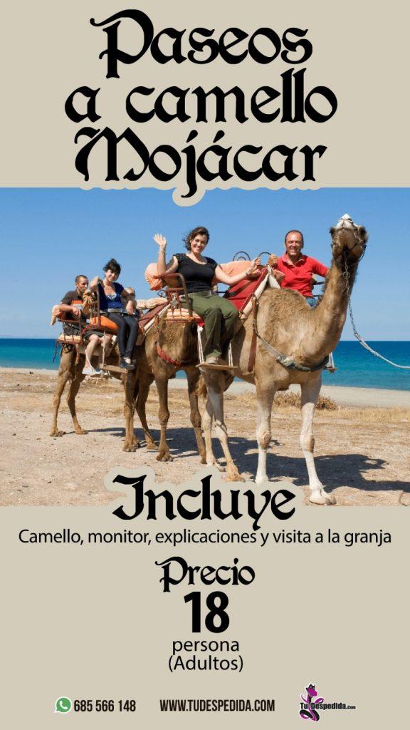 Rutas a Camello por Almería